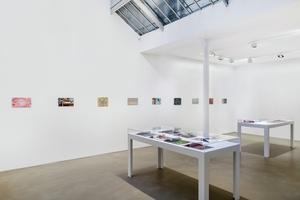 Clément Rodzielski, Galerie Chantal Crousel, Paris, 2020.