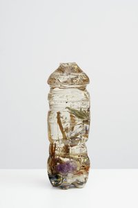 Mimosa Echard, I Still Dream of Orgonon, 2016