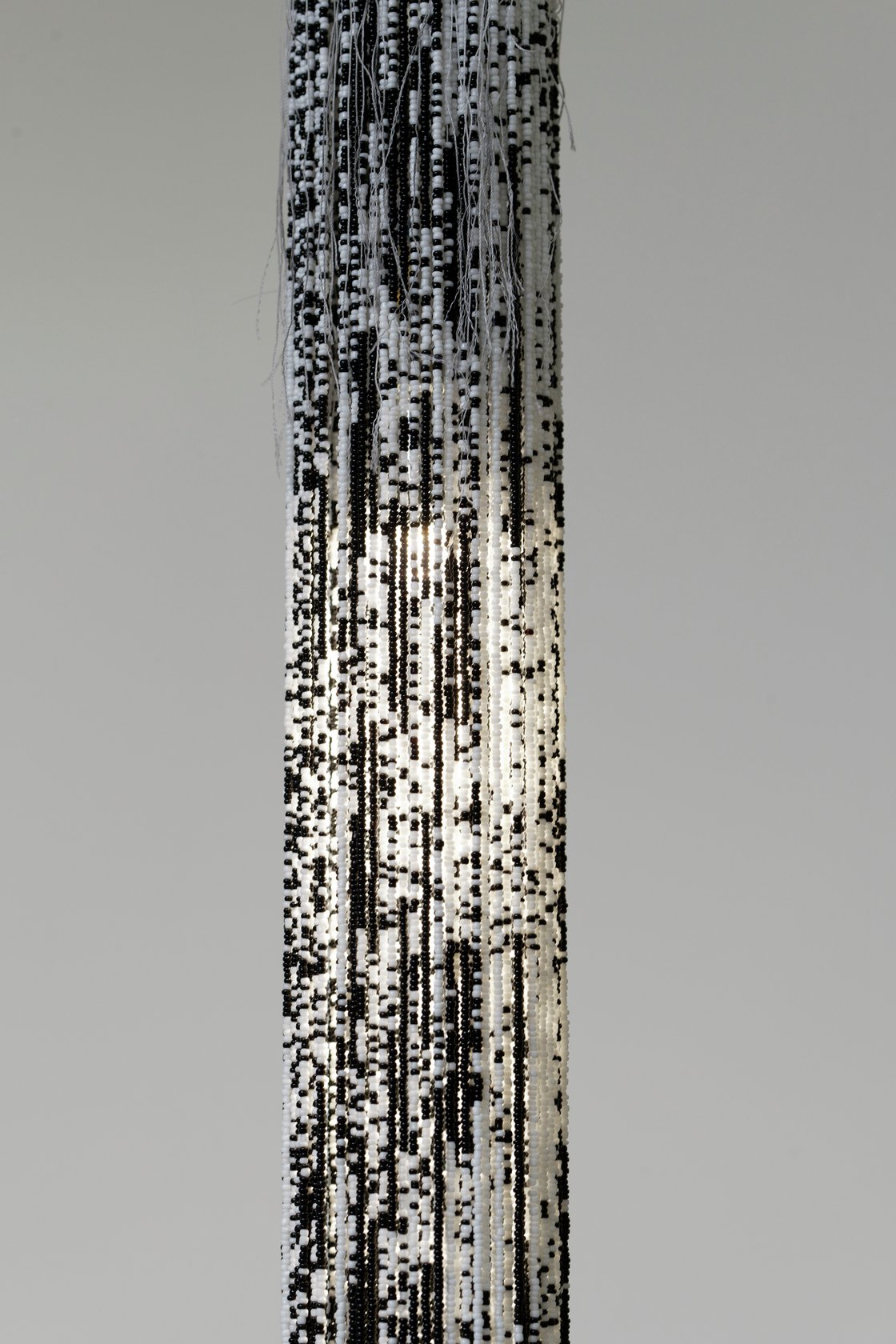 Mimosa Echard, Sap 3, 2021