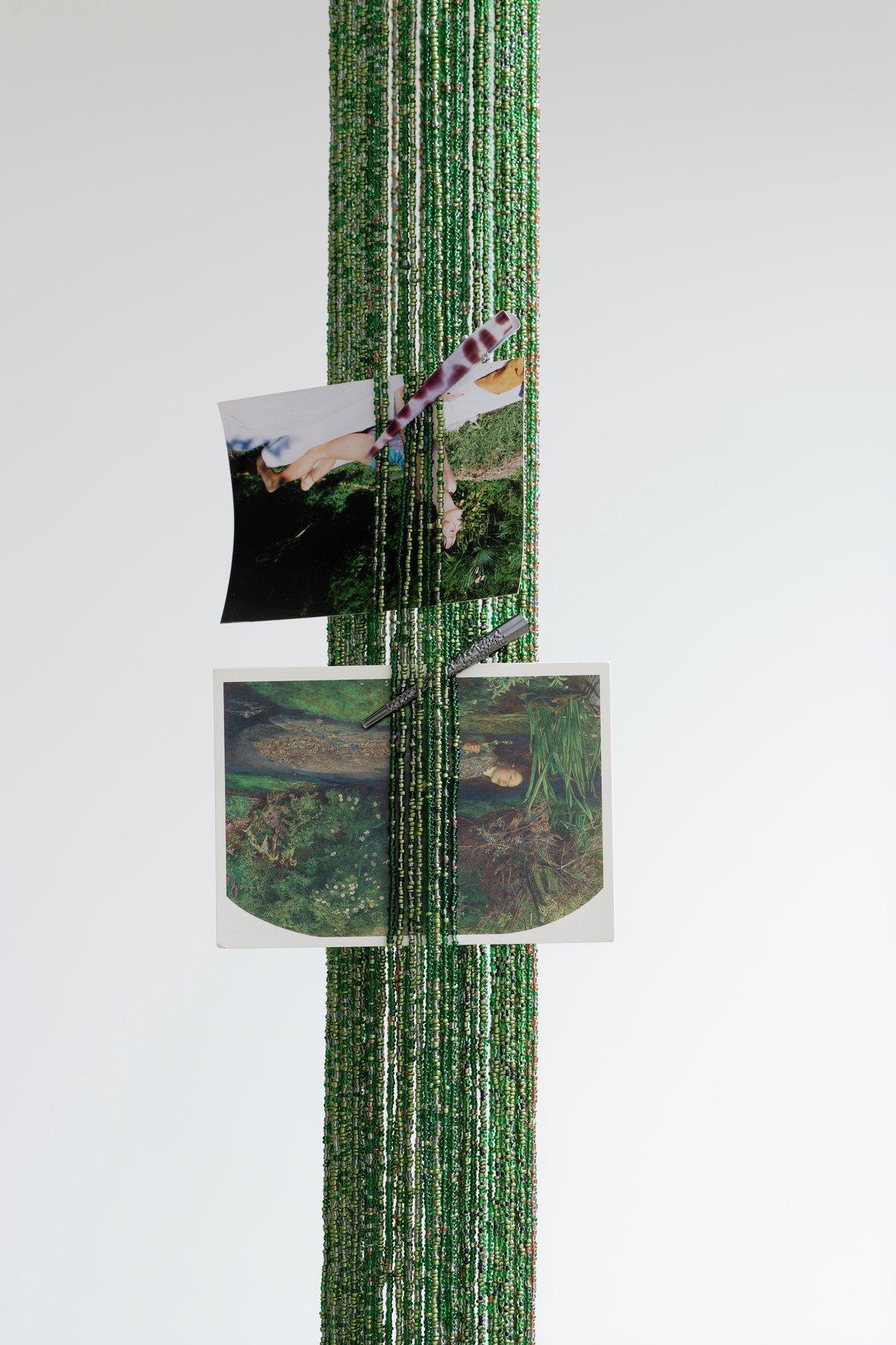 Mimosa Echard, Sap 4, 2021