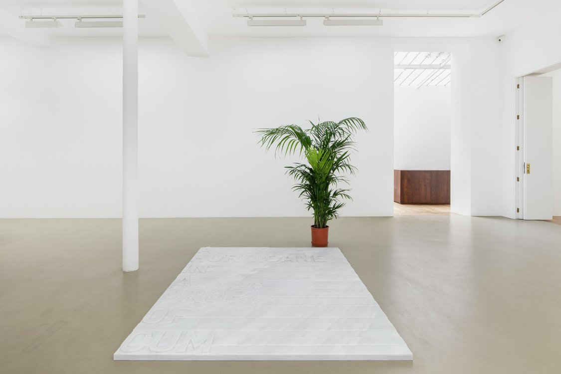 Rirkrit Tiravanija, untitled 2020 (a hurricane in a drop of cum) (two flags, 1962), 2020
