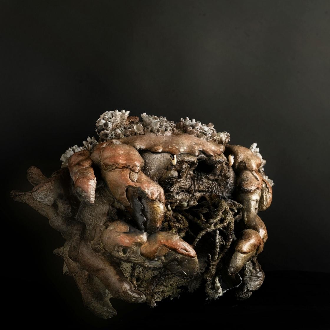 Crab Hydra 1
