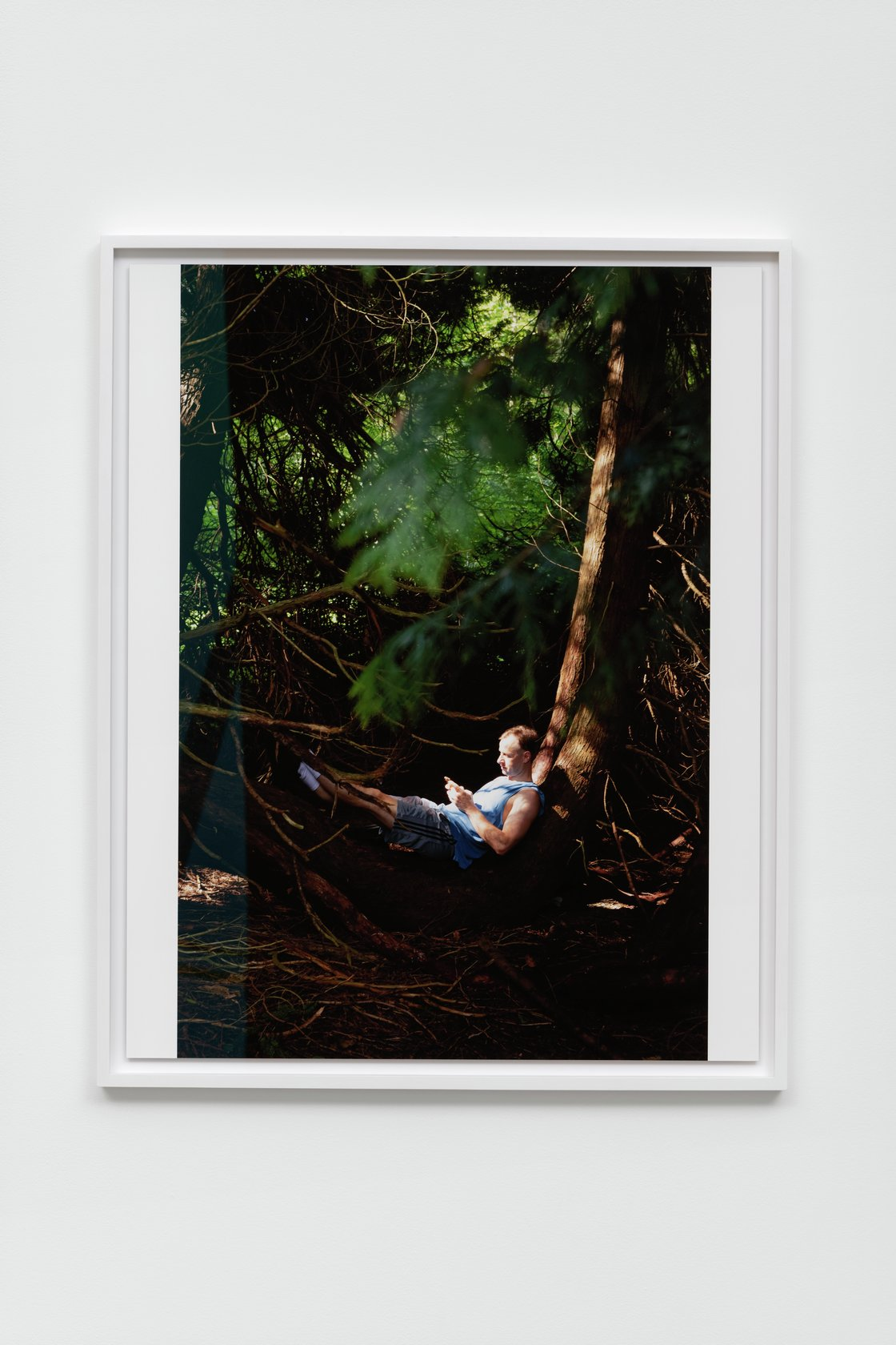Wolfgang Tillmans, Micha, Arboretum, 2020