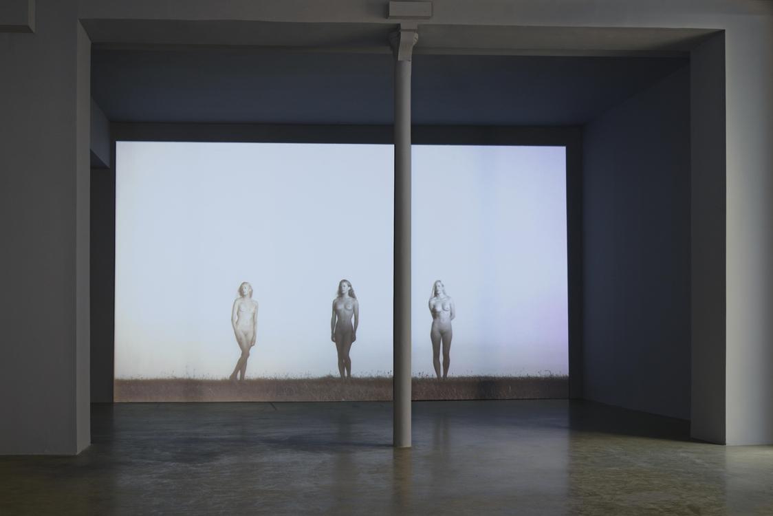 Exhibition : Danh Vo Galerie Chantal Crousel | Daily Art Fair