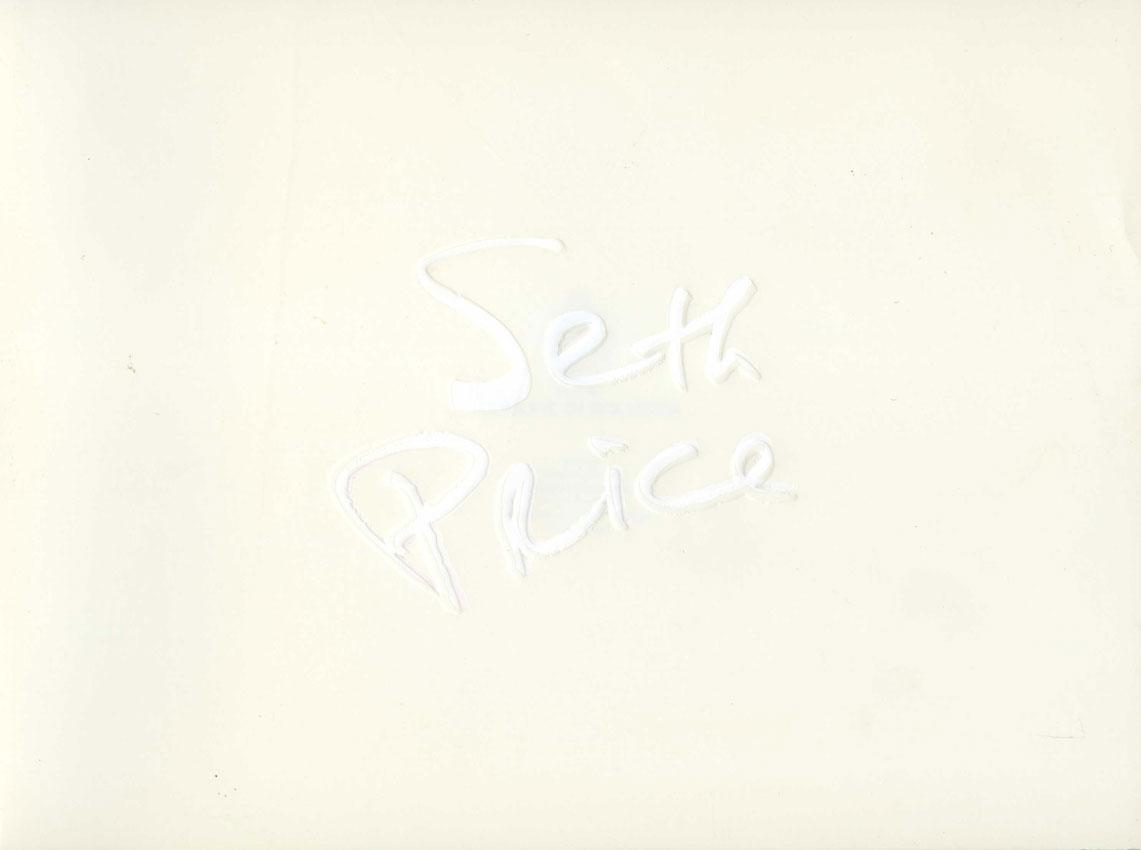 Seth Price, Museo d'Arte Moderna di Bologna